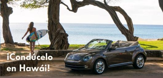 concurso beetle hawai