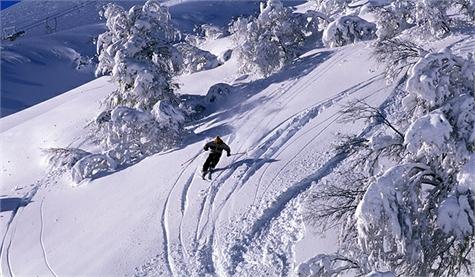 neuquen esqui
