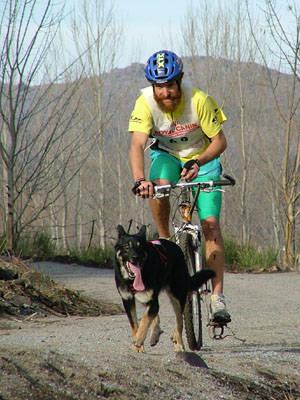 bikejoring_035.jpg